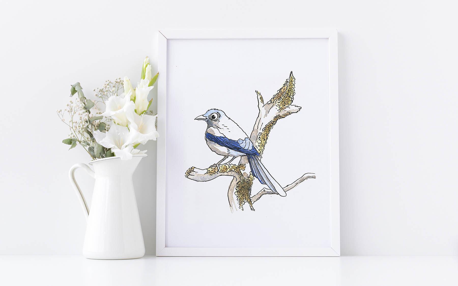 illustration oiseau aquarelle